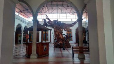 Photo of Aumentarán sueldo a funcionarios penjamenses
