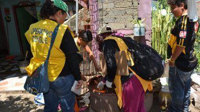 Photo of Tasa de incidencia de casos por dengue en Guanajuato fue de 4.9 casos por cada 100 mil habitantes