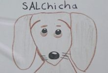 Photo of Niño dibuja carteles para encontrar a su perrita salchicha
