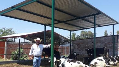 Photo of Apoyo a la zona rural con la instalación de tejados