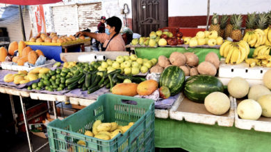 Photo of Promueve mercado guerrero servicio a domicilio