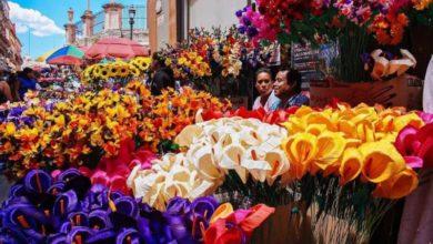 Photo of En Guanajuato autorizan la tradicional venta de flores pese a la cuarentena